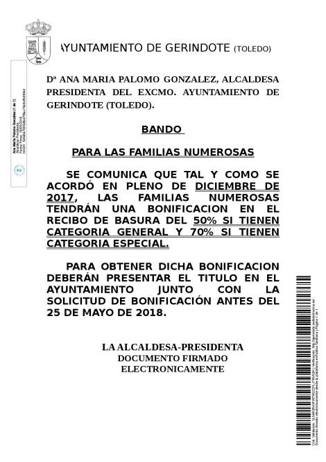 BANDO BONIFICACION FAMILIAS NUMEROSAS-001