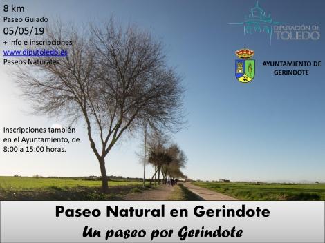 CARTEL PASEO GERINDOTE_page-0001.jpg
